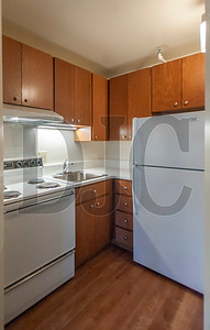 A renovated kitchen features updated appliances, fixtures and cabinetry. (Josh Kulla/DJC)