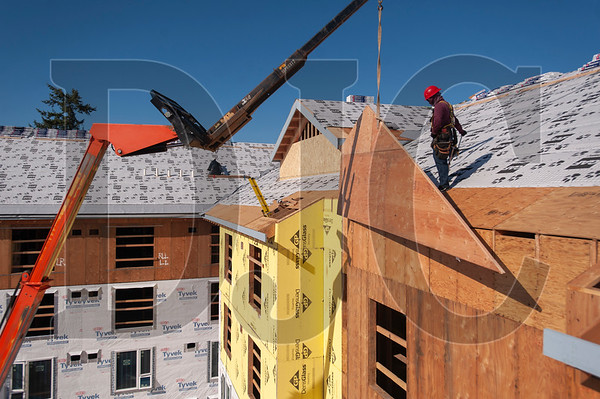 A carpenter with Time Frame Construction helps lower a framed gable end onto the roof. (Josh Kulla/DJC)