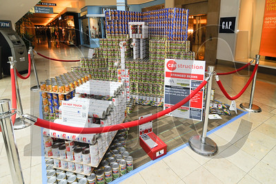 0501_Canstruction_09