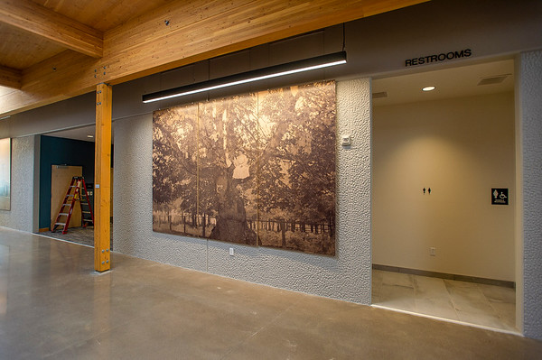 Large historic photos of Gladstone adorn the public corridor. (Josh Kulla/DJC)