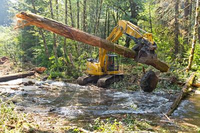 0913_Habitat_Restoration_02
