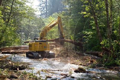 0913_Habitat_Restoration_01