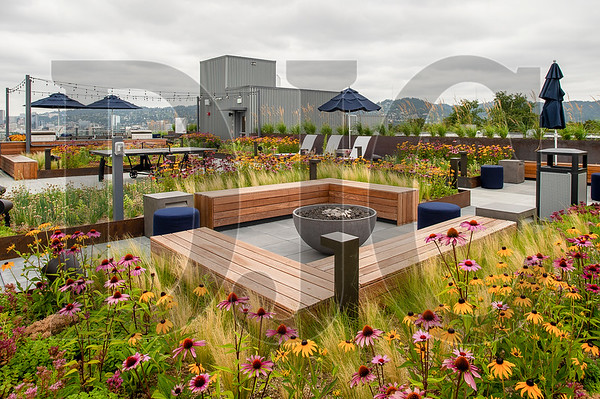 The rooftop lounge features with planters full of wildflowers, barbecue stations and gathering space. (Josh Kulla/DJC)