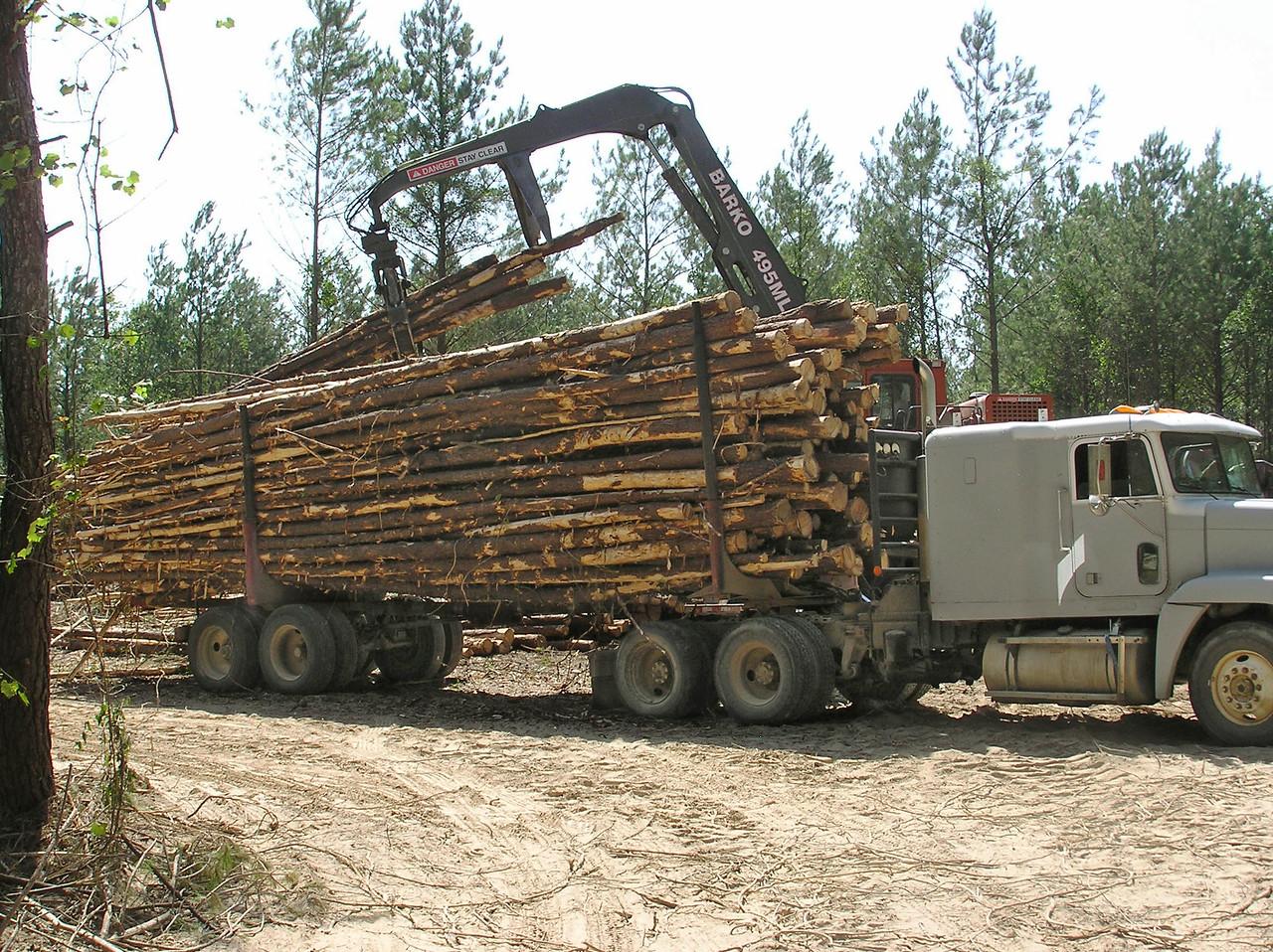 NewOrleans_07_Texas2009-33