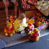 Madison setting up a 100 Acre party 11-10-02