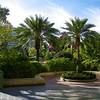 Disneyland Hotel.