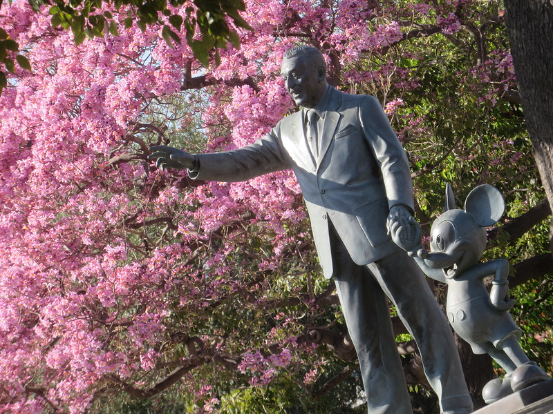 PICTORIAL: Spring blooms at Disneyland plus foodies rejoice, Guardians fly, and more!
