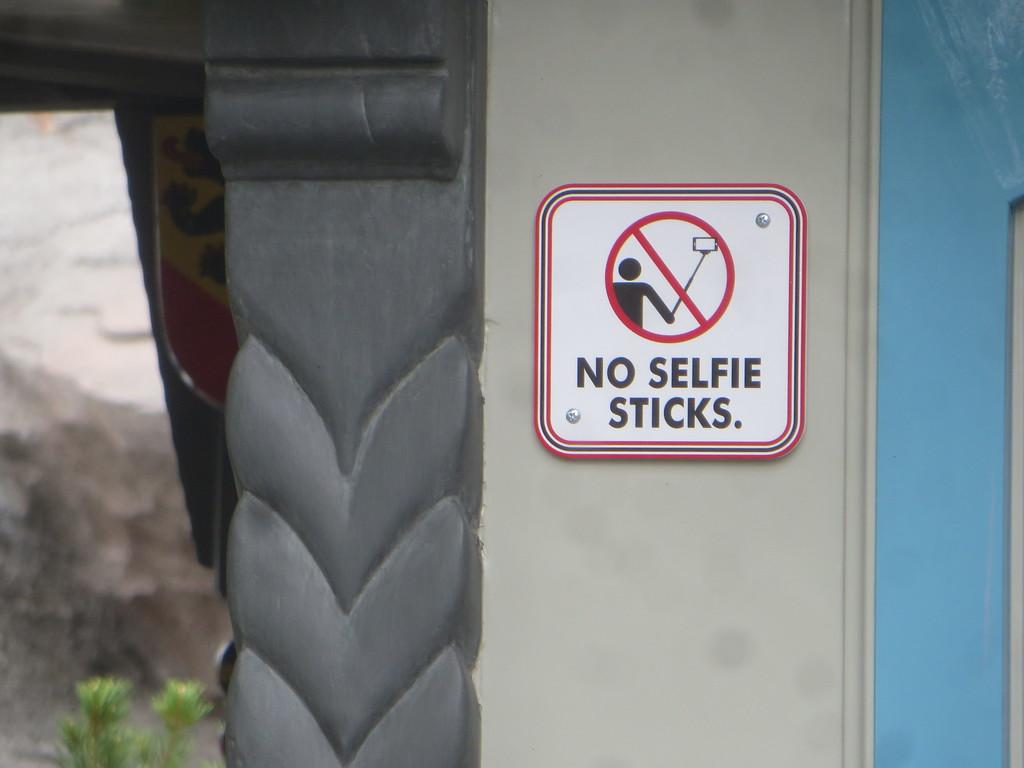 Faut-il interdire les perches télescopiques dans les attractions ? - Page 9 IMG_3160-L