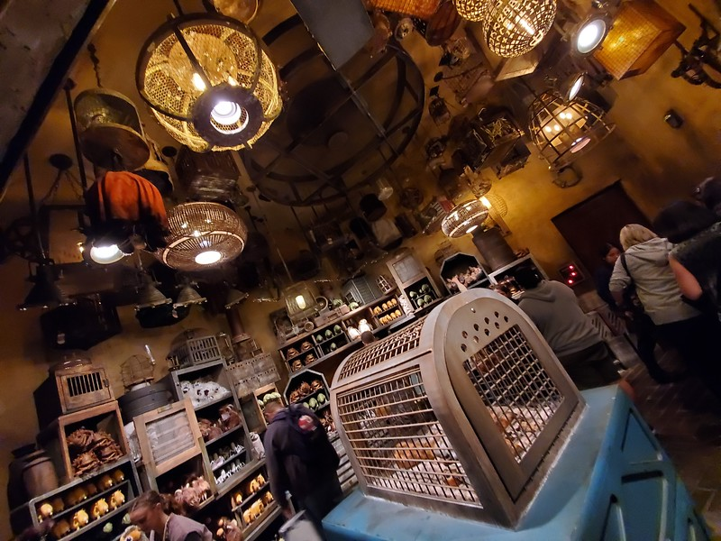 SWGE GUIDE: Inside 'Creature Stall' at Star Wars: Galaxy's Edge in Disneyland