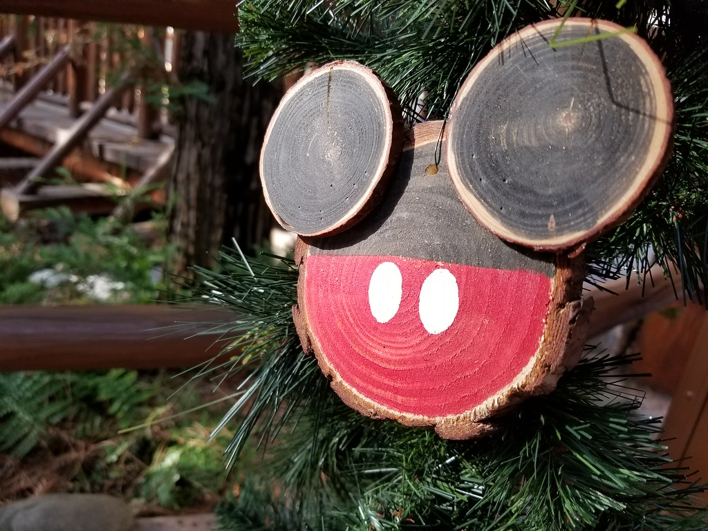 PICTORIAL: You have to visit Santa in this magical forest setting for the #DisneyHolidays!