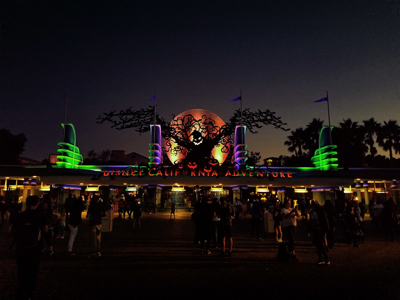 PICTORIAL: Crowds pack-in for another weekend of Halloween Time, construction continues