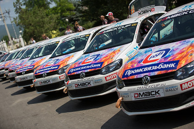 DMACK CUP 2013