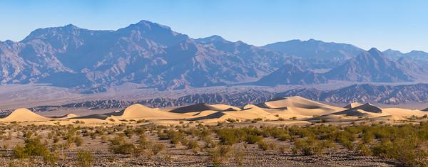 mesquite dunes morning