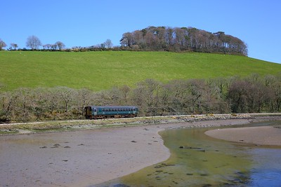 153372 on the 2L84 1352 Looe to Liskeard at Terras crossing, Sandplace on the 18th April 2018