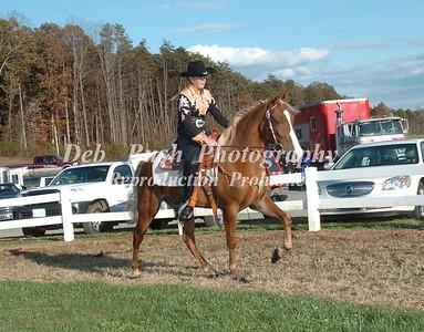 CLASS 10  WALKING HORSE TRAIL PLEASURE SPECIALTY OPEN