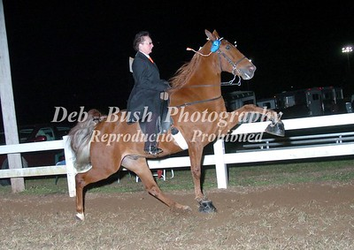 CLASS 25  AMATEUR OWNED & TRAINED SPECIALTY