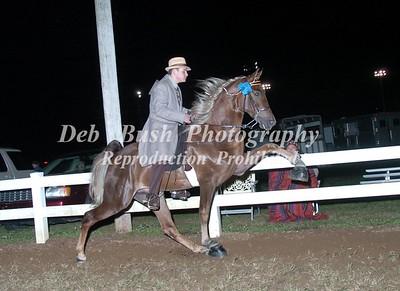 CLASS 29  OPEN WALKING HORSE SPECIALTY