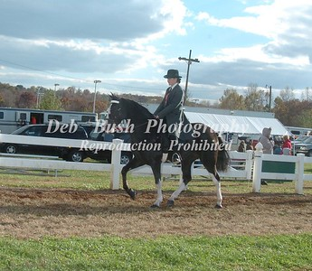 CLASS 5  PLANTATION LITE SHOD YOUTH SPECIALTY