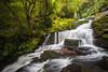 McLean Falls, Tautuku River, Catlins