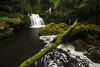 Falls, Tautuku River. Catlins, Otago