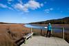 Tautuku Estuary, Catlins Coastal Area