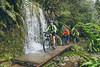 Three mountain bikers (male, female) ride past waterfall on the Charming Creek Walkway