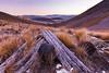 Clent Hills Saddle, Te Araroa Trail, Hakatere Conservation Park