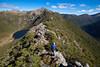 Yuletide Peak, Kahurangi National Park