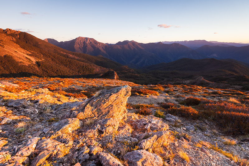Evening light on the tops, Mount Starveall, Mount Richmond Forest Park