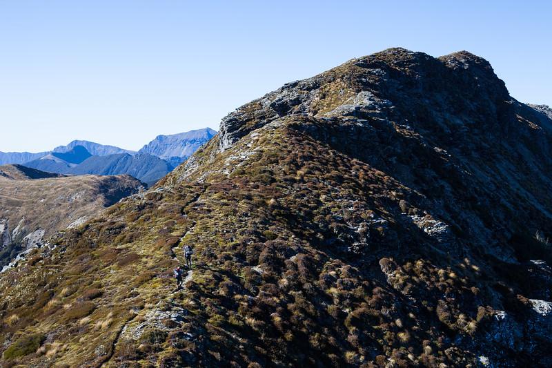 Trampers on ridgeline, Mount Richmond Forest Park