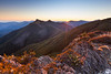 Bryant Range & Lowther Saddle at daybreak, Mount Richmond Forest Park, Nelson Marlborough