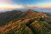 Bush covered Mount Pirongia summit, Waikato