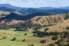 Webb Road and Northland farming country