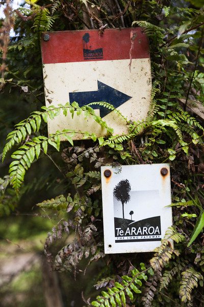 Trail signage, Te Araroa Trail, Waikare, Northland