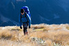 Female tramper walks Zampa Tops, St James Conservation Area