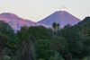 Mount Tongariro and Mount Ngauruhoe at sunset from Tongariro Forest