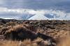 Mount Ngauruhoe from Rangipo Desert/Te Onetapu, Tongariro National Park