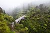 Bridge to Nowhere, Whanganui National Park