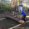Log roll on rails