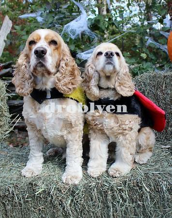 Howl-O-Ween Loweland Farm