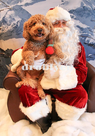 OTPR Photos with Santa