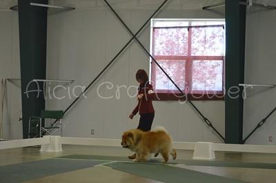 Helena Dog Show103