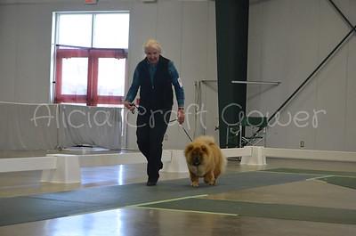 Helena Dog Show094