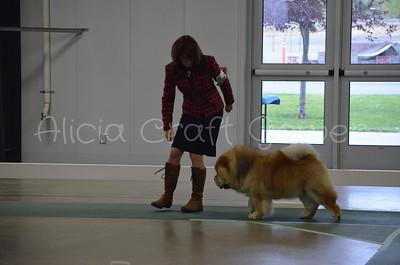Helena Dog Show316
