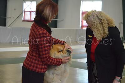 Helena Dog Show111