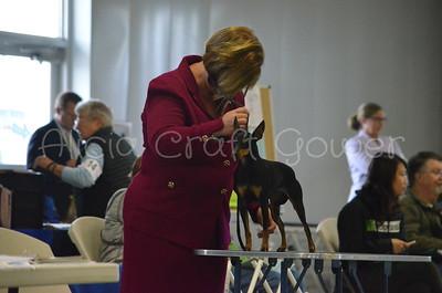 Helena Dog Show153