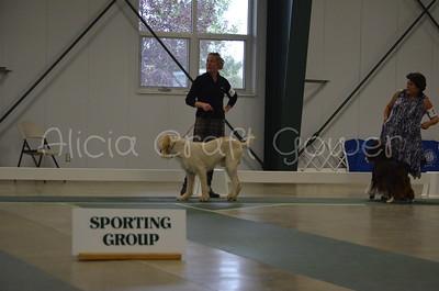 Helena Dog Show223