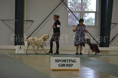 Helena Dog Show228
