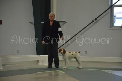 Helena Dog Show237