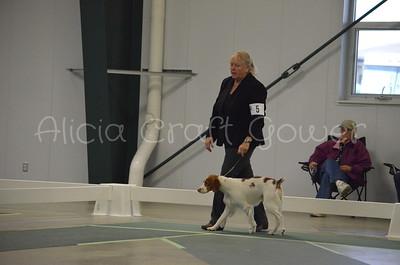 Helena Dog Show231